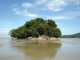 Places to visit in Guwahati, Assam Kaziranga National Park