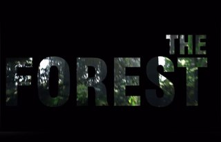 The Forest title