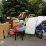 Section 8 renter