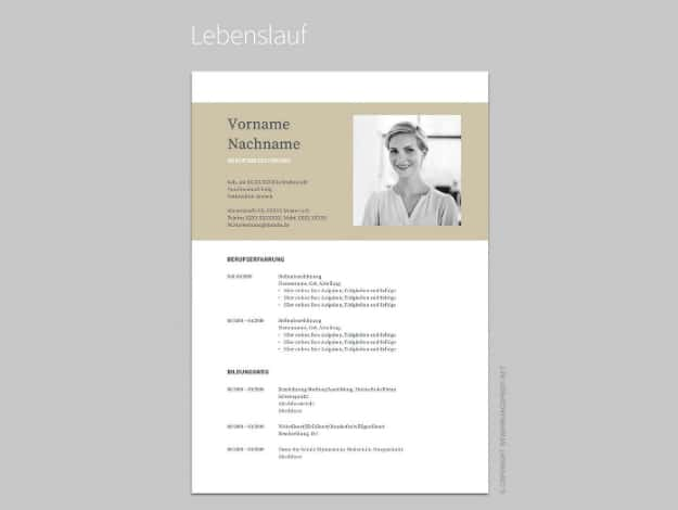 Google Docs Template Resume resume google template templatesmberpro - Google Docs Resume Templates