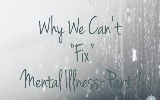 "Why We Can't ""Fix"" Mental Illness: Part 2"