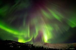 Aurora Borealis near Alta, photo altafoto.no