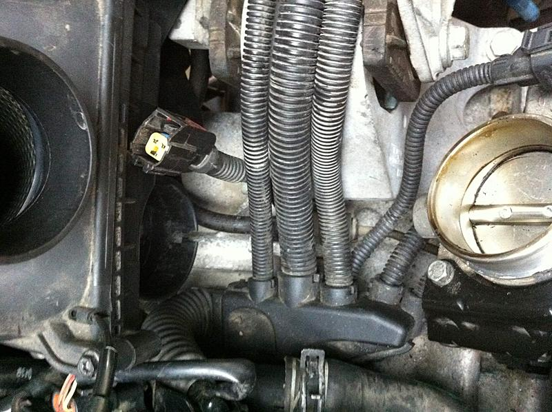 mini cooper s engine wiring harness