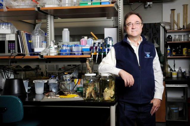 William Detrich, Professor of Marine Molecular Biology and Biochemistry posed for a portrait in the Marine Science Center at Northeastern University