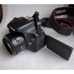 Small Crop Of Canon T3i Review