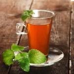 Infusiones de Té Verde y Té Rojo para bajar de peso