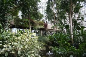 Notas desde el Barbican y su invernadero