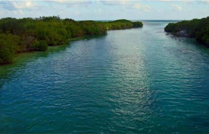 Peligra Punta Nizuc, Cancún, por proyecto hotelero