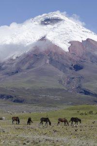 Cotopaxi Province, Ecuador Por Mis Ojos