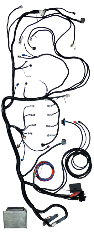 Ls2 Wiring Harness Ecm technical wiring diagram