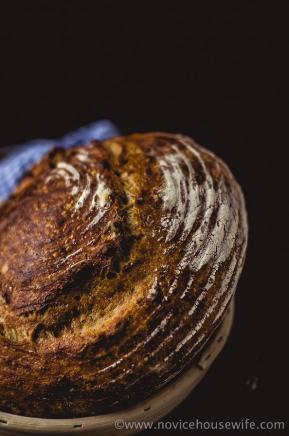 Mark Bittman's No Knead Bread | The Novice Housewife
