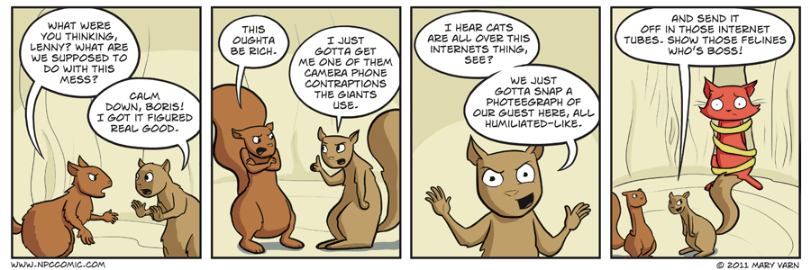 This is how city squirrels talk.