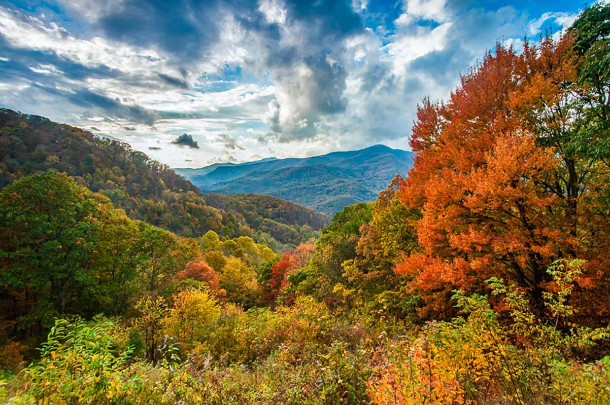 New England Fall Foliage Desktop Wallpaper Fall Colors Blue Ridge Parkway U S National Park Service