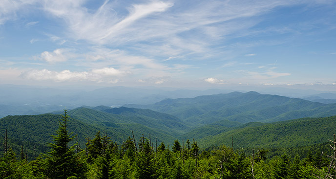 Fall Smoky Mountains Wallpaper Clingmans Dome Great Smoky Mountains National Park U S