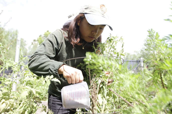 Local Youth Complete Summer Jobs with National Park Service - Santa