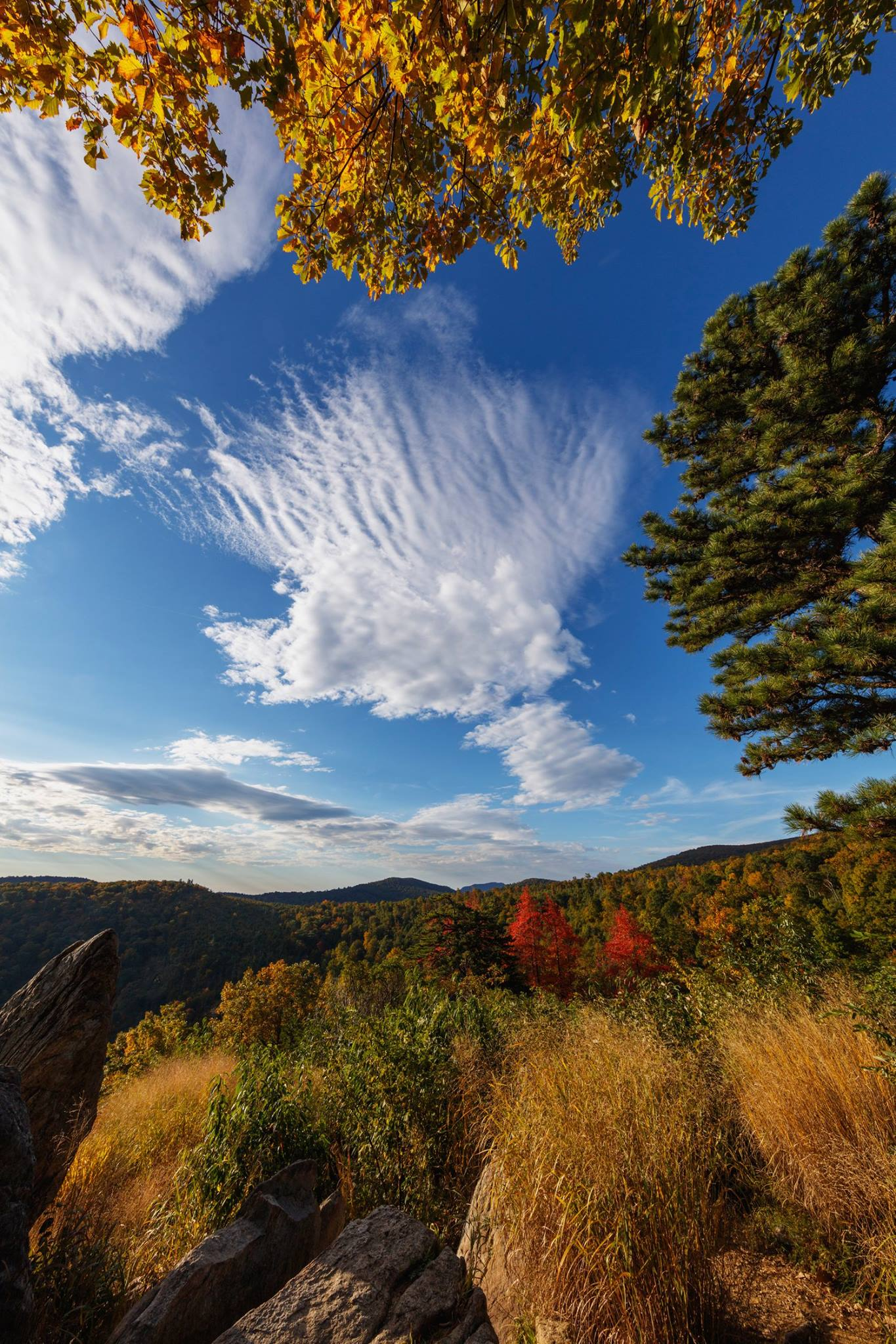 Fall Scenes Wallpaper Shenandoah S Fall Color Shenandoah National Park U S