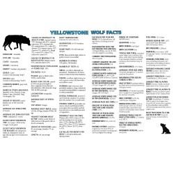 Mutable Ys Yellowstone Wolf Facts Yellowstone National Park Nationalpark Ys Yellowstone Wolf Facts Yellowstone National Park Male Wolf Names Jungle Book Male Wolf Names Yahoo bark post Male Wolf Names