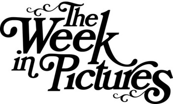 week in pictures nubby twiglet typography