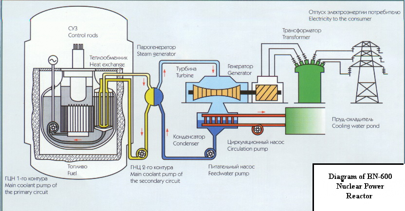 Liquid Metal Cooled Nuclear Power Plant Reactor Designs