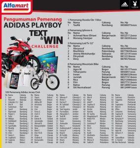 adidas winner