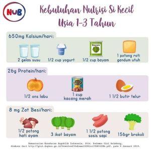 Seberapa Banyakkah Kebutuhan Nutrisi Si Kecil 1-3 Tahun ?