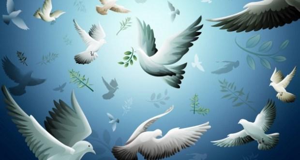 peace-world-peace-9444894-1920-1200_fa_rszd