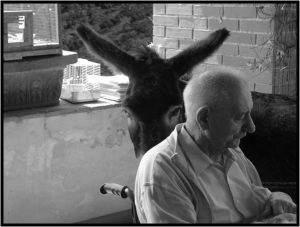 La riabilitazione con gli animali