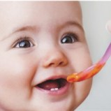 menu-del-bebe-como-diversificar-su-alimentacion_89___Selected[1]