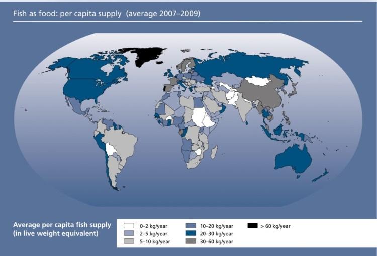 consumo mundial pescado