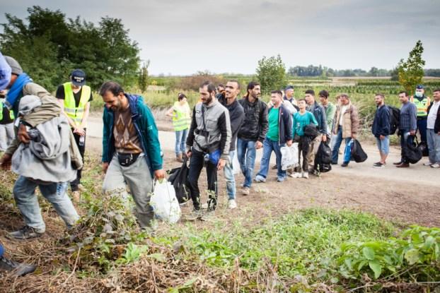 GYEKENYES- OCTOBER 6 : War refugees at the Gyekenyes Zakany Railway Station on 6 October 2015 in Gyekenyes, Hungary. Refugees are arriving constantly to Hungary on the way to Germany.