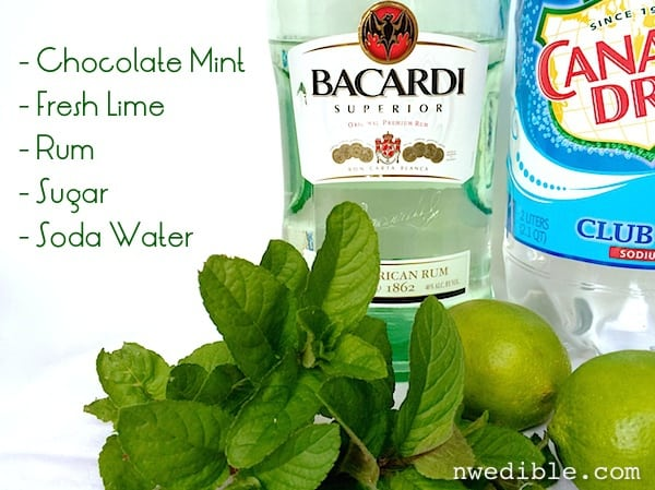 Chocolate Mint Mojito
