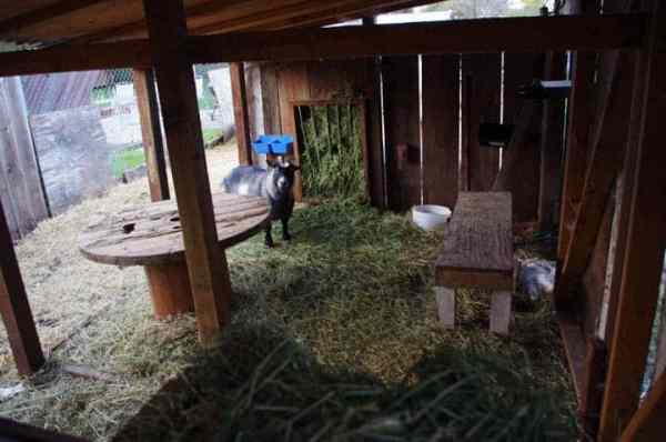 inside-barn