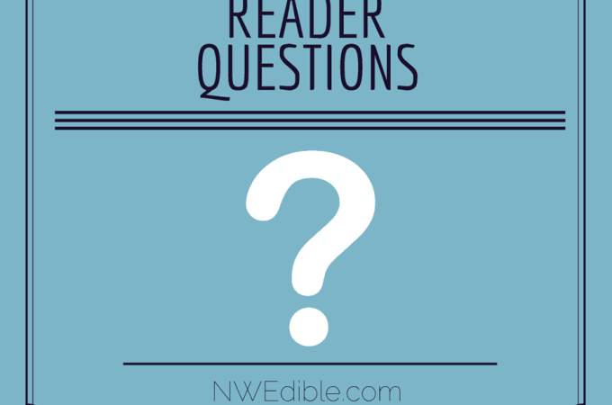 Reader Questions: February