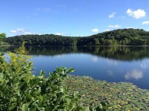 lake rupert