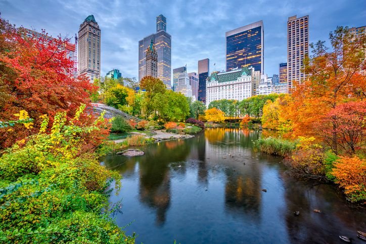 Upstate New York Fall Hd Wallpaper New York City Vacation Plan A Nyc Trip In 10 Easy Steps