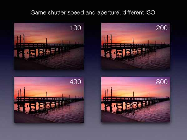How Does ISO Work? - NYIP Photo Articles