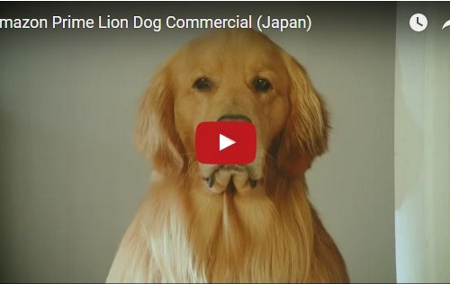 nyminutenow amazon japan dog-lion ad award