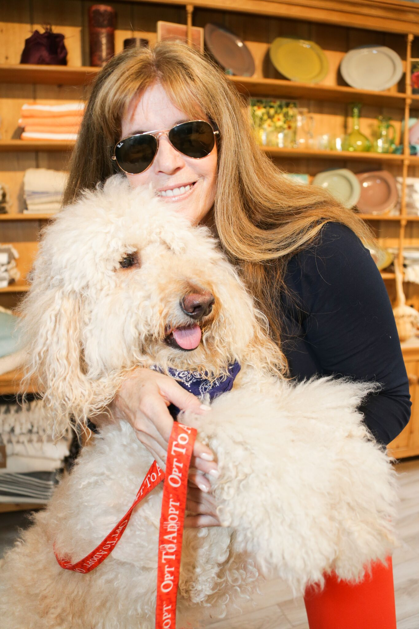 """The Southampton Animal Shelter Foundation's """"Dog Days of Summer"""" Party"""