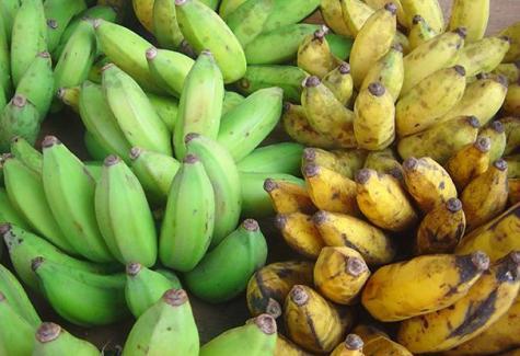 Top 5 superfruits to keep energy high