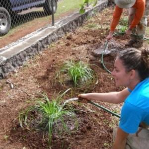 CS, JP watering the new plants