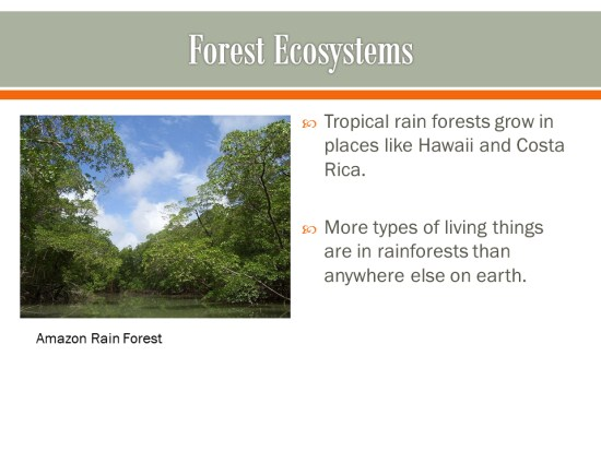 Ecosystems PowerPoint Activity K-5 Computer Lab Technology Lessons