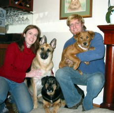 Dog Training Oakland County