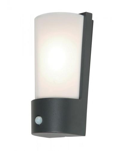 Elstead Lighting Azure Low Energy 1 Light Outdoor Security