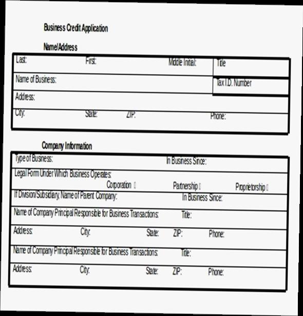 Business credit application form pdf - business application form