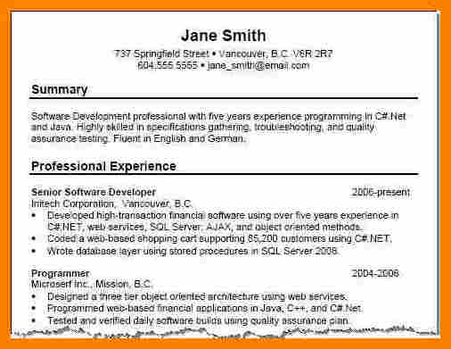 example resume profile summary resume profile summary example - Sample Profile Summary For Resume