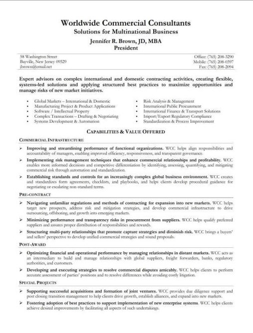Resume Summary Examples - resume summary format