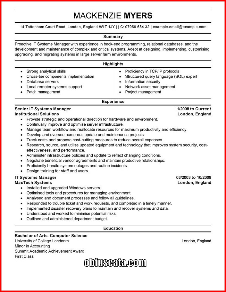 Resume Templates - it resume templates