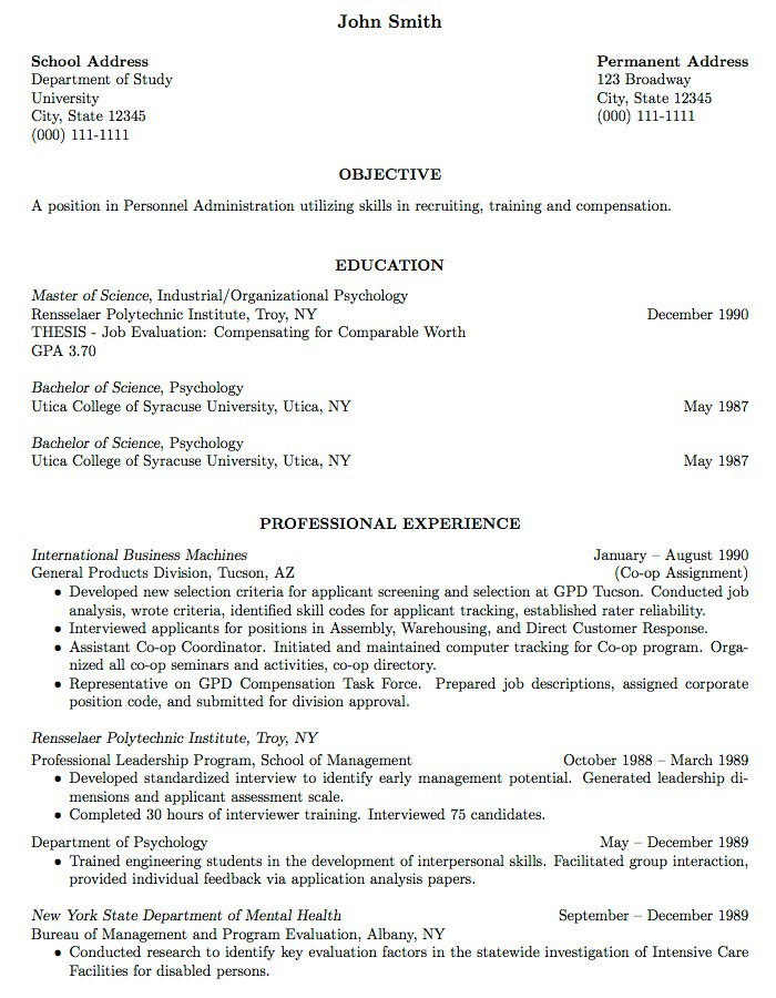 Resume Work Experience Samples - resume work experience format