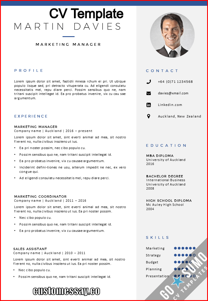 brief cv example