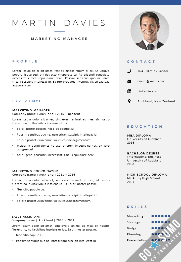 template cv with picture
